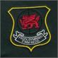 Ysgol Gynradd Gymraeg Cwm Nedd Uniform