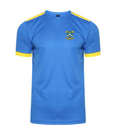 Briton Ferry Training T-Shirt (Child)