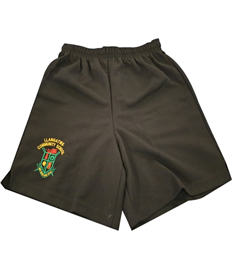 Llangatwg Rugby Shorts (Childrens)