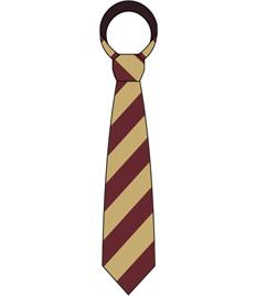 Cefn Saeson School Tie