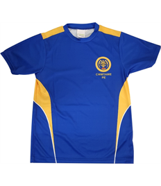 Cwmtawe School - PE T-Shirt (CHILD SIZES)