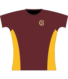 Cefn Saeson PE Top (Adult Sizes)